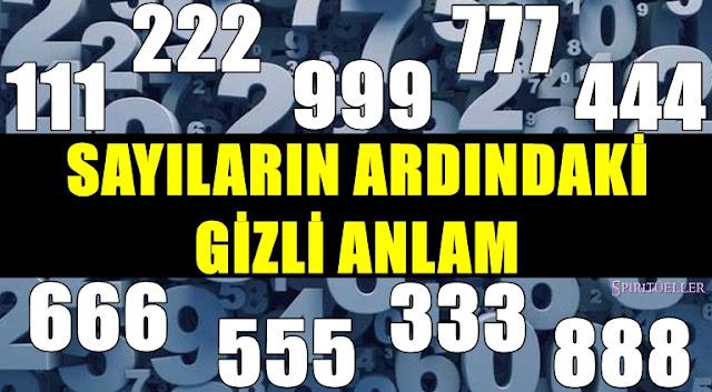 58164.jpg