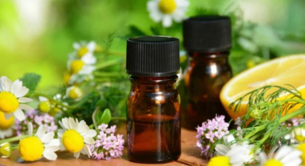 Let's See the Benefits of Essential Oils for Body Relaxation