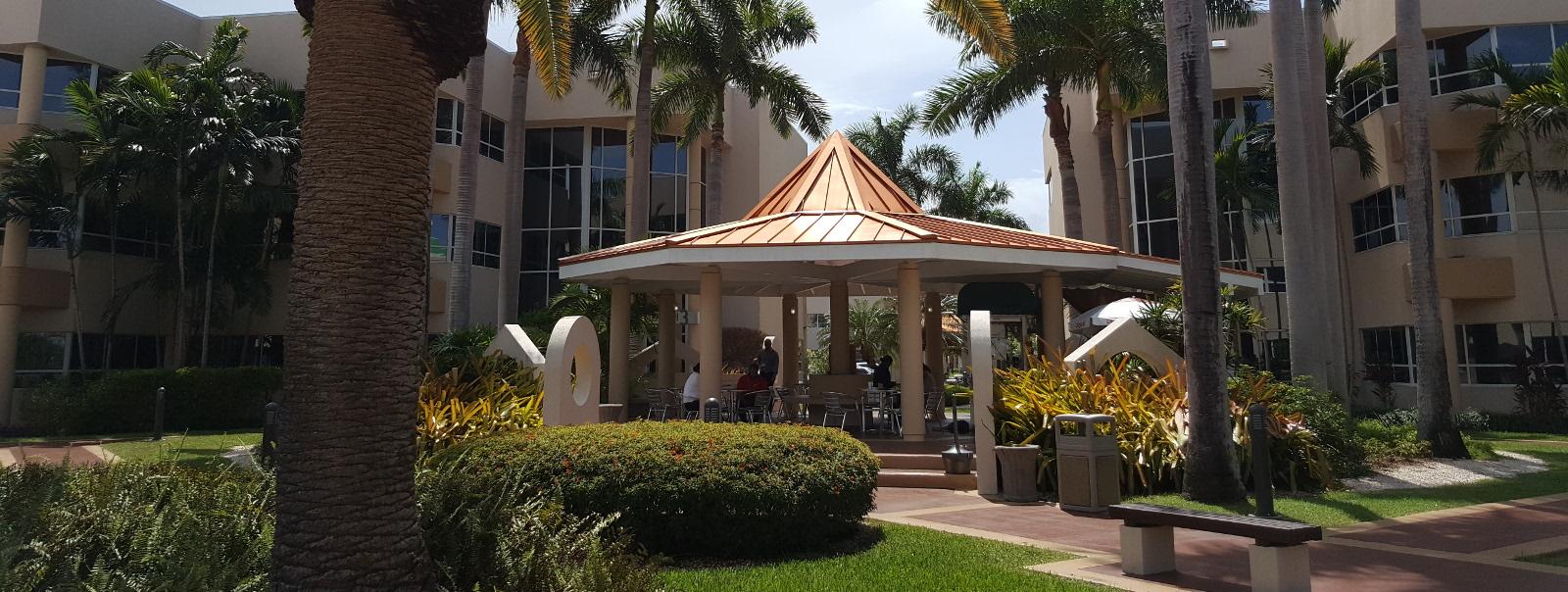 Matthew's University
