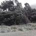 Video από τα χιόνια στον Αρνάδο