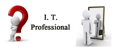Apa yang dimaksud dengan Profesional TI ?