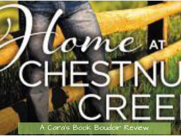 Home at Chestnut Creek by Laura Drake Review