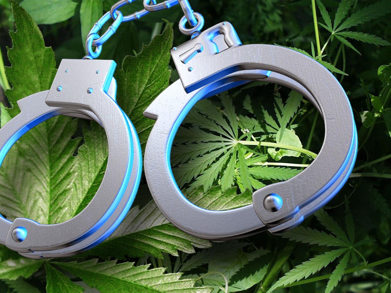 Cannabis Illegal