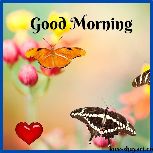 good morning images for fiance