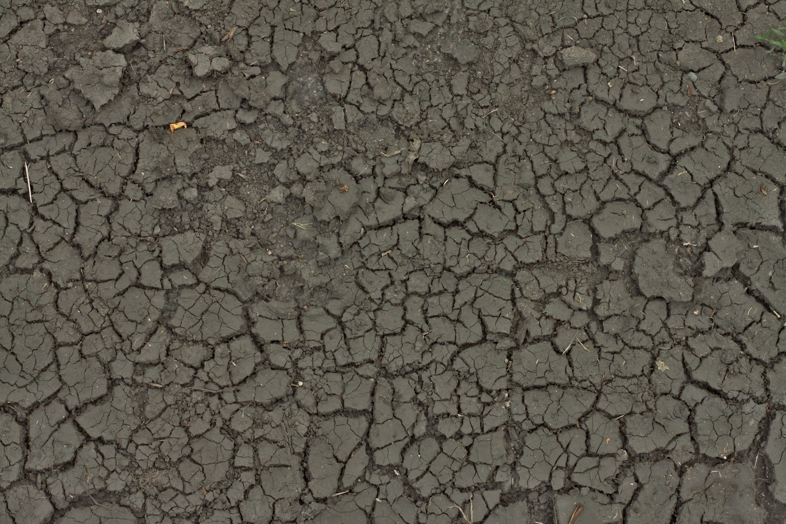 Mud cracked dirt soil ground texture ver 1