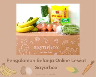 Pengalaman Belanja Online Lewat Sayurbox