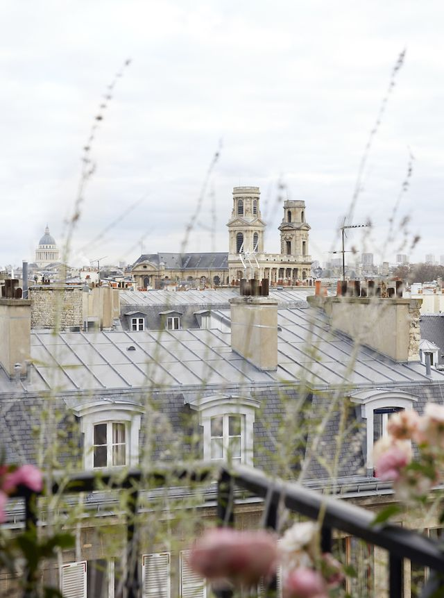 Paris Rooftops  | Glamorous Paris Apartment In St.Germain