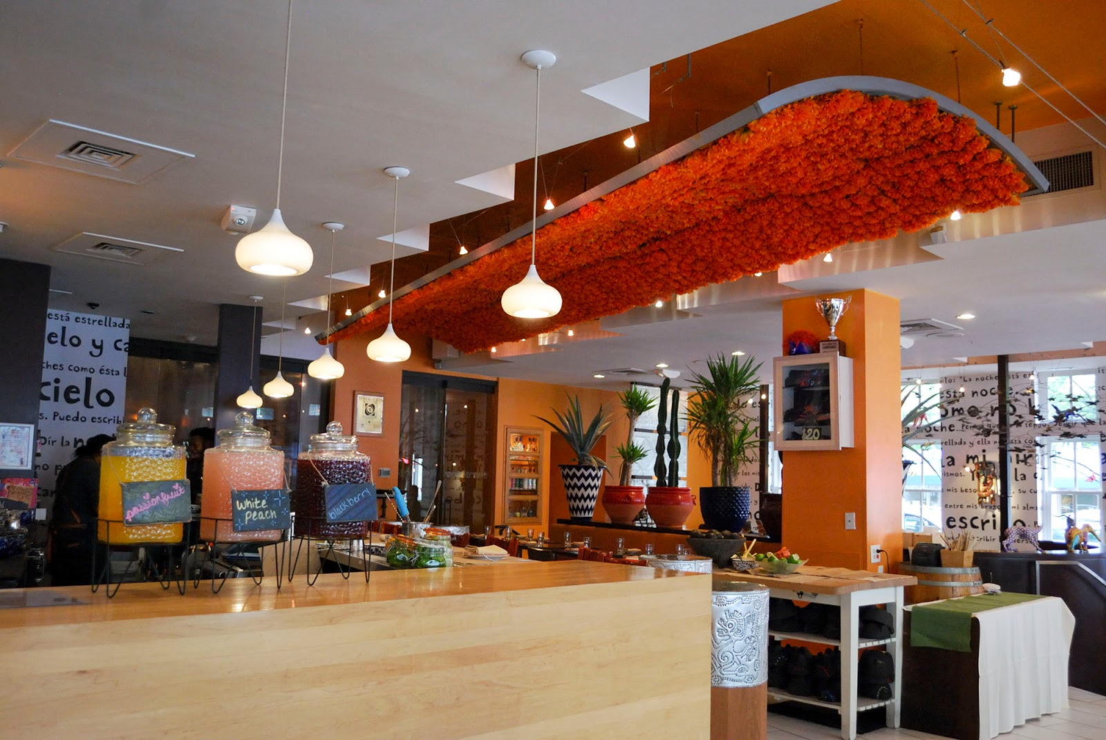 washington dc itinerary guide map restaurant oyamel cocina mexicana menu jose andres
