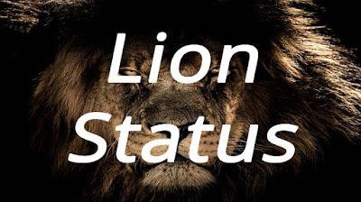 Lion Status