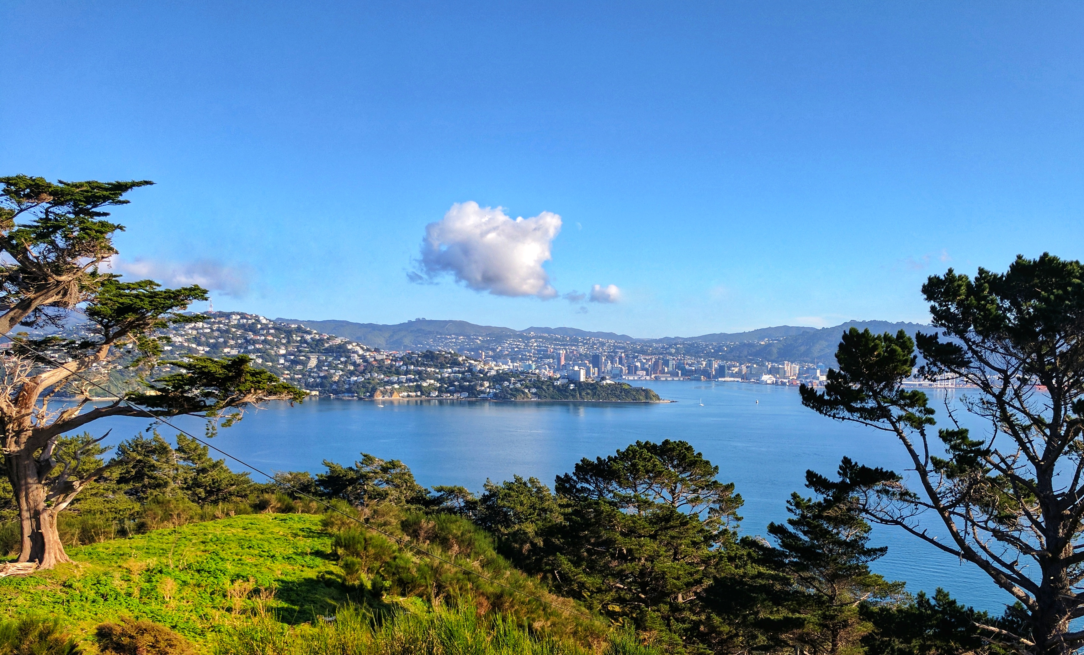 Wellington view from Maupuia above the Massey Memorial