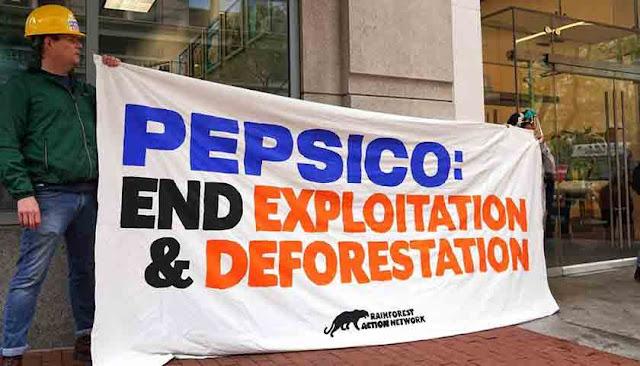 PepsiCo Adopsi Perubahan Pendekatan Kelapa Sawit yang Komprehensif