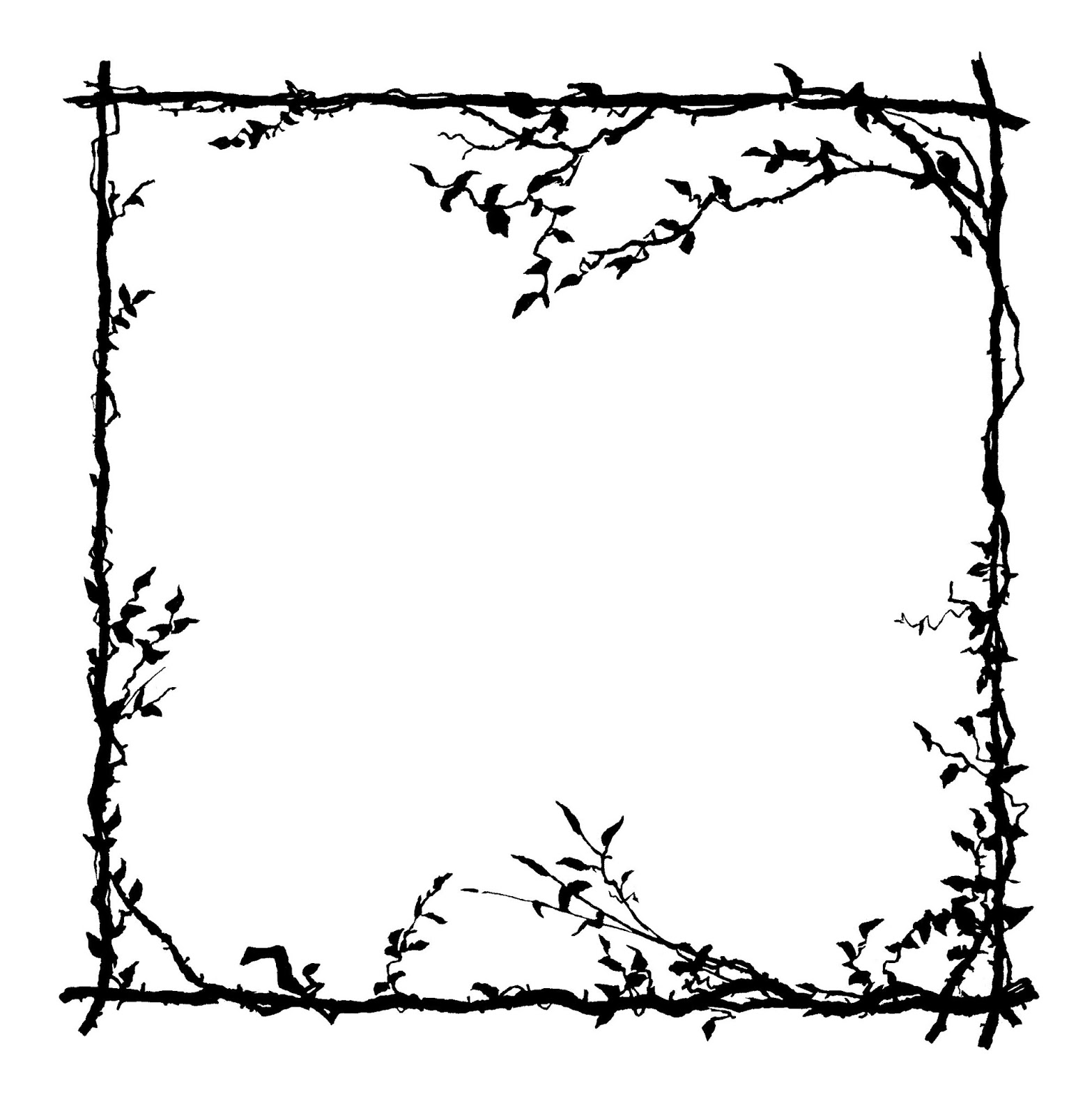Frame Design Line Art : Digital stamp design free frame botanical