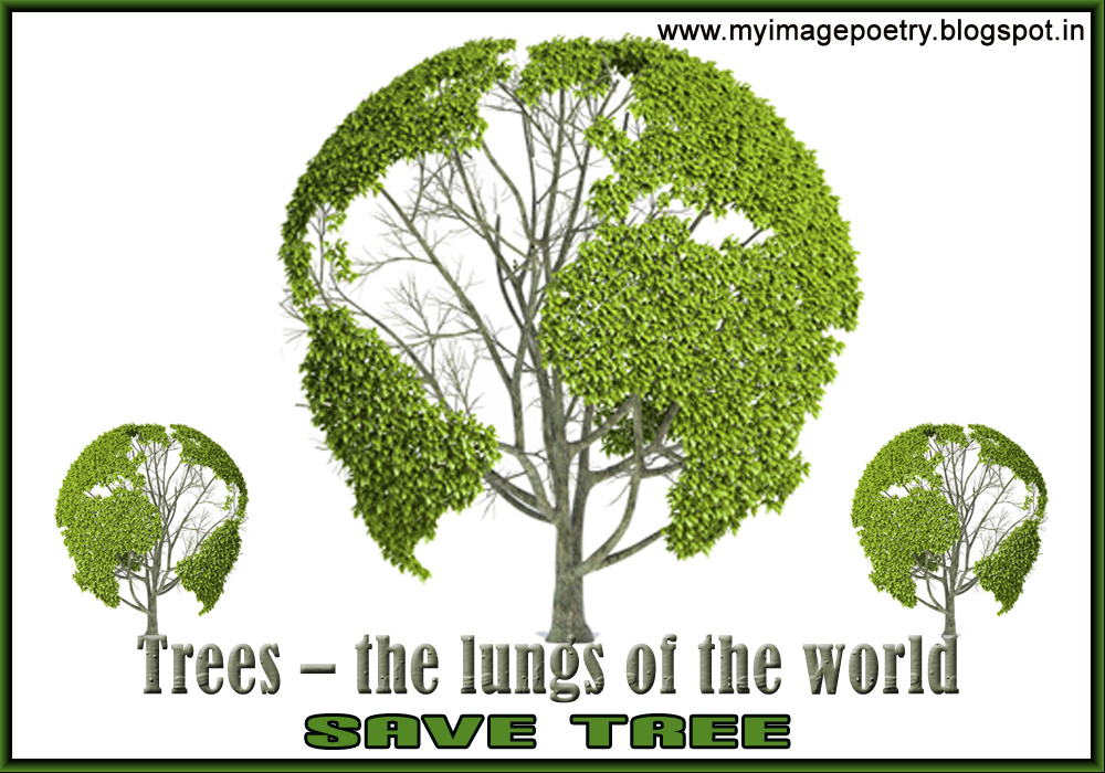 Short essay on saving the environment