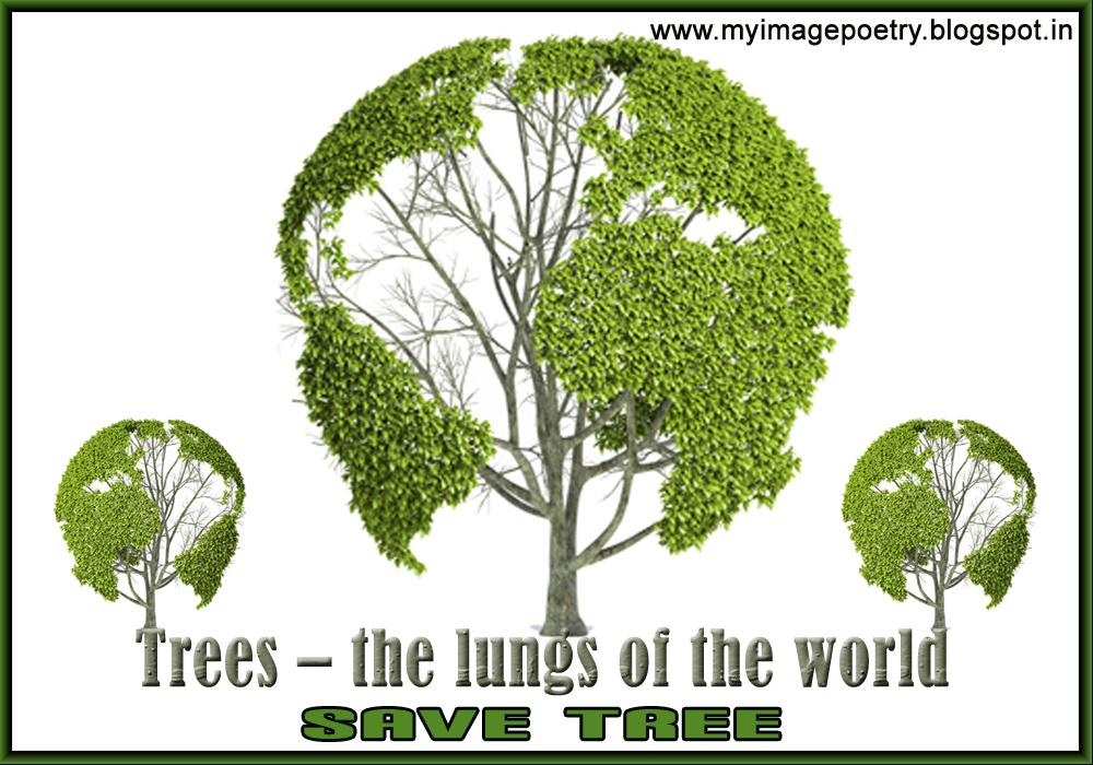 Essay on plant trees save life