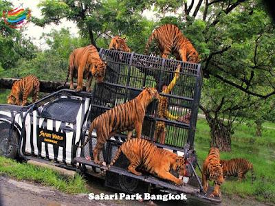 Bangkok - Safari World
