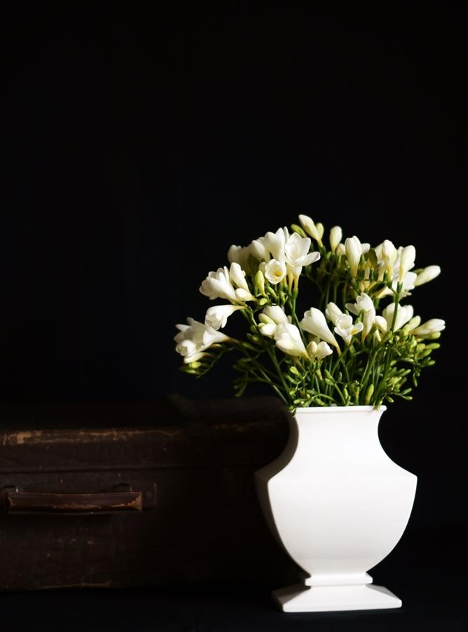Blog + Fotografie by it's me! | fim.works | Freesien in weißer Vase