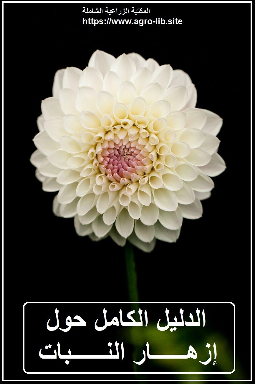 كتاب : الدليل الكامل حول إزهار النبات