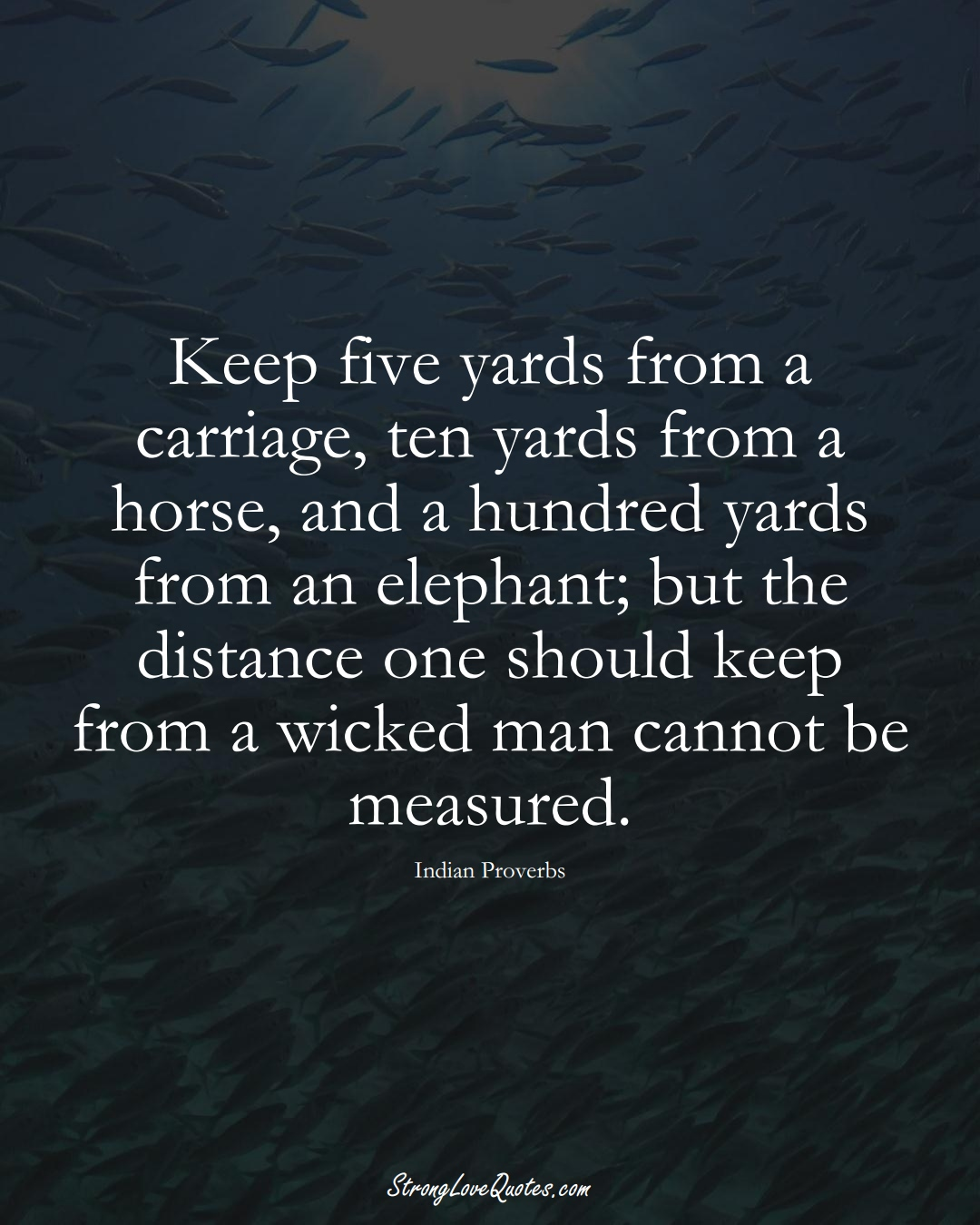 Keep five yards from a carriage, ten yards from a horse, and a hundred yards from an elephant; but the distance one should keep from a wicked man cannot be measured. (Indian Sayings);  #AsianSayings