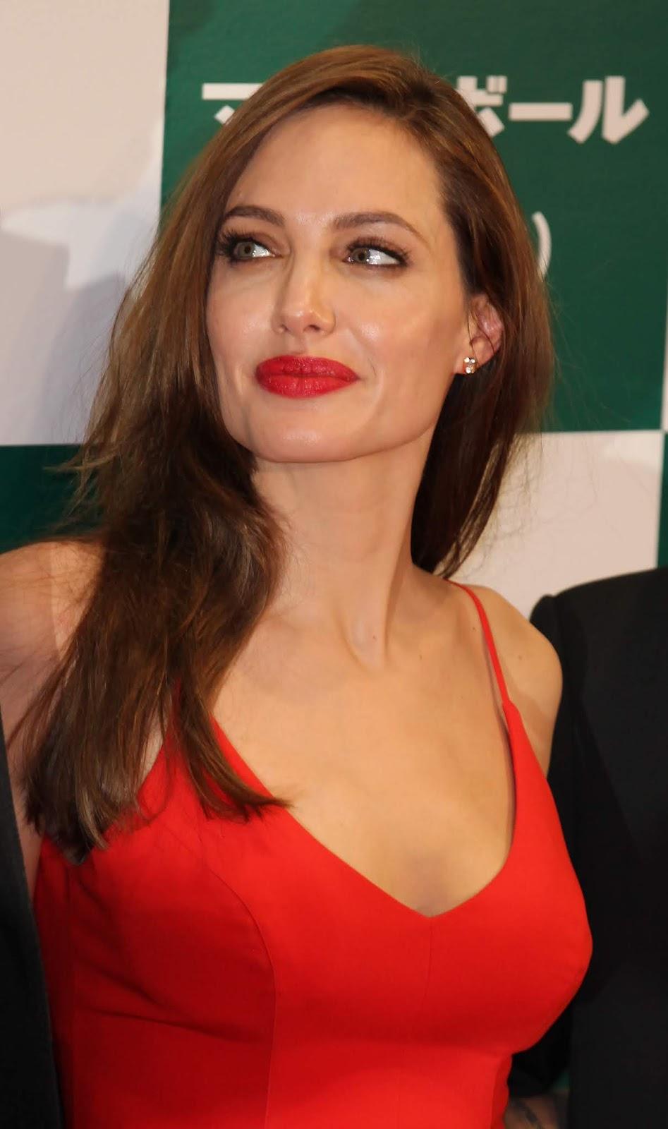 Angelina Jolie donated $1 million