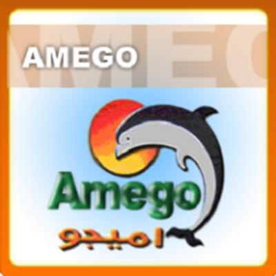 العمل فى وظائف شركة أميجو لسنة 2021