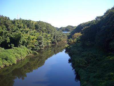 005 河川名称「印旛放水路(下流...