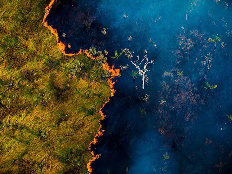 Maranhão tem queda de 25% no número de queimadas em setembro