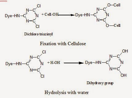 Hydrolysis of reactive dye