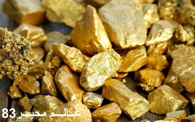 باستخدام كاشف معادن.. باحث مبتدئ يعثر على كنز من الذهب التاريخي