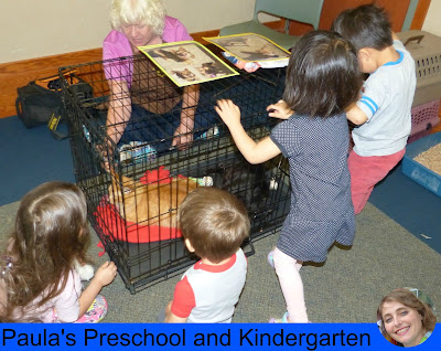 Fun preschool or kindergarten activities and ideas for learning about cats and dogs.