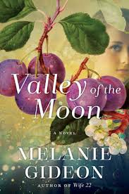 https://www.goodreads.com/book/show/30008681-valley-of-the-moon?from_search=true&search_version=service