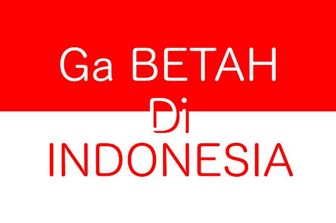 7 Alasan Mengapa Orang Luar Negeri Betah di Indonesia