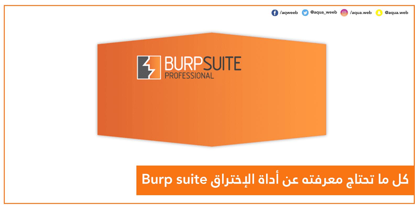 كل ما تحتاج معرفته عن أداة الإختراق Burp suite