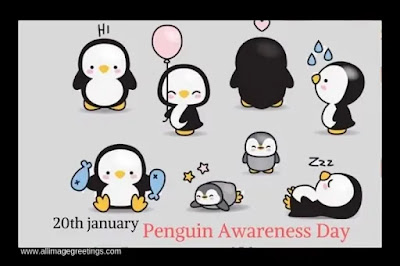 penguin Awareness Day photo