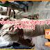महिला चौकीदार ने चप्पल से सरेआम की पुरूष चौकीदार की पिटाई (वीडियो)