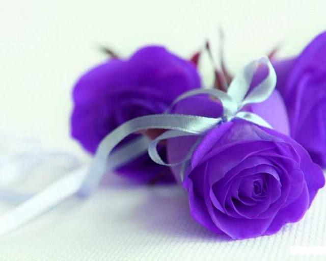 hoa sinh nhật cho người mệnh thổ