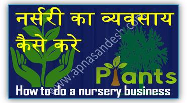 नर्सरी का व्यवसाय कैसे करे - How to do a nursery business
