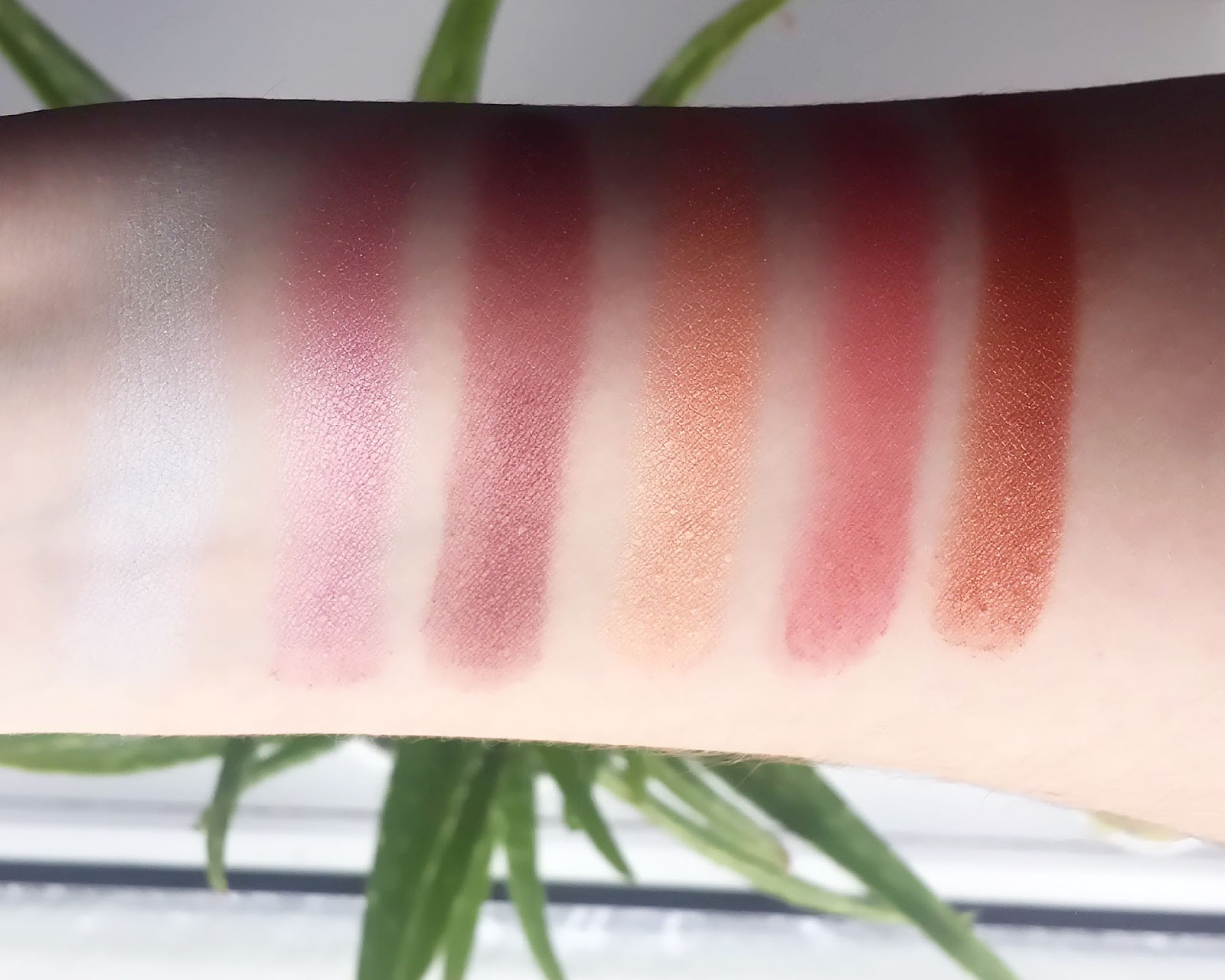 Beauties Factory Earth Eyeshadow Palette Swatch