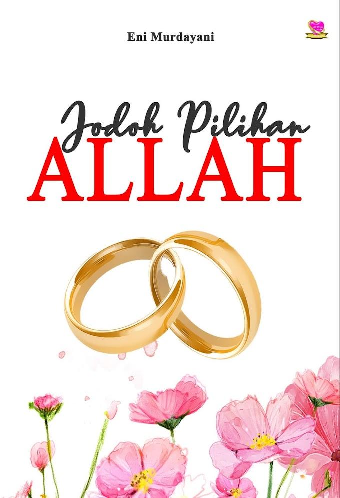 Novel : Jodoh Pilihan Allah