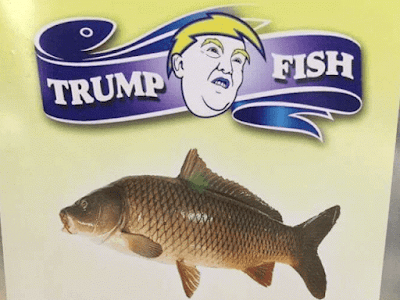 Terrierman 39 s daily dose for Trump feeding fish