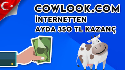 cowlook