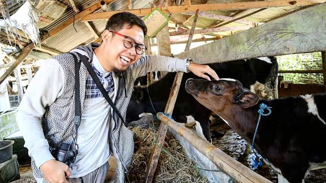 Pemberdayaan dompet dhuafa sapi perah