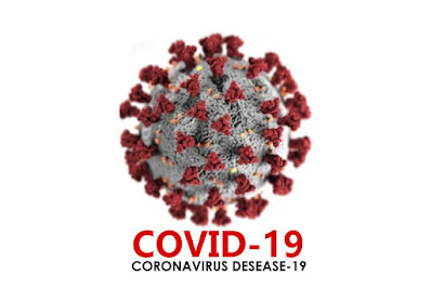 2.233 Sampel Diperiksa di Riau, Hasilnya 726 Positif COVID-19