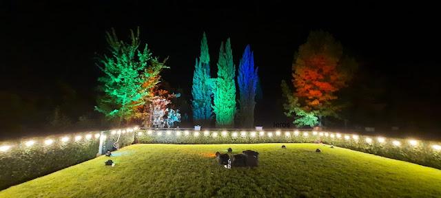 Noleggio luci matrimonio lighting designer