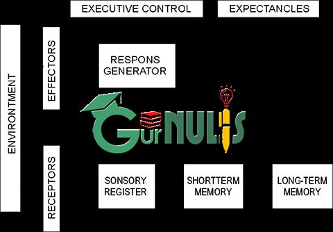 Teori Belajar Gagne dalam Pembelajaran IPA SD - www.gurnulis.id