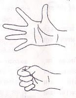 hand-yoga-exercise-in-hindi