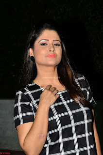 Shilpa Chakravarthy in Dark blue short tight dress At Srivalli Movie Pre Release Event ~ Exclusive Celebrities Galleries 034