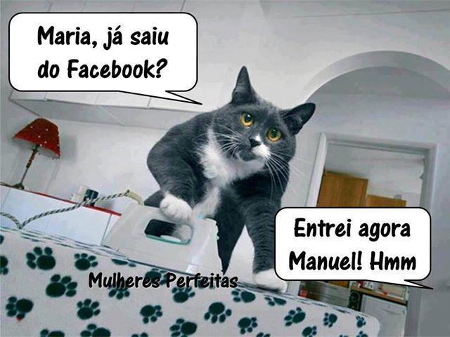 Frases De Tiradas: Frases Engraçadas Tiradas Do Facebook
