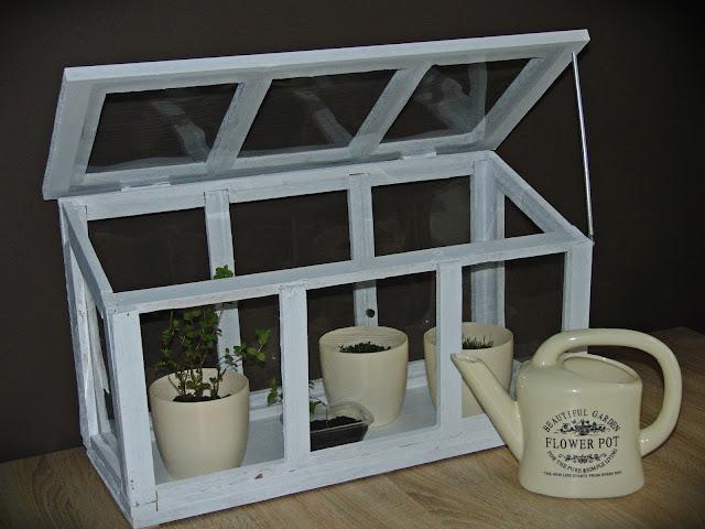mini szklarnia domowa DIY