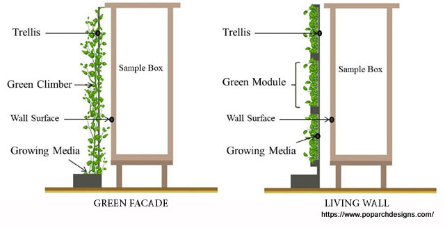 Green wall - living vs facade