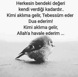 spruche türkisch